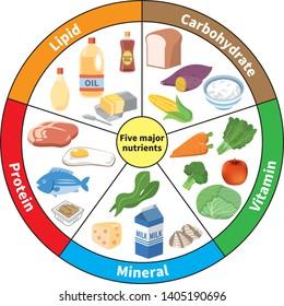 Description: Nutrients High Res Stock Images   Shutterstock